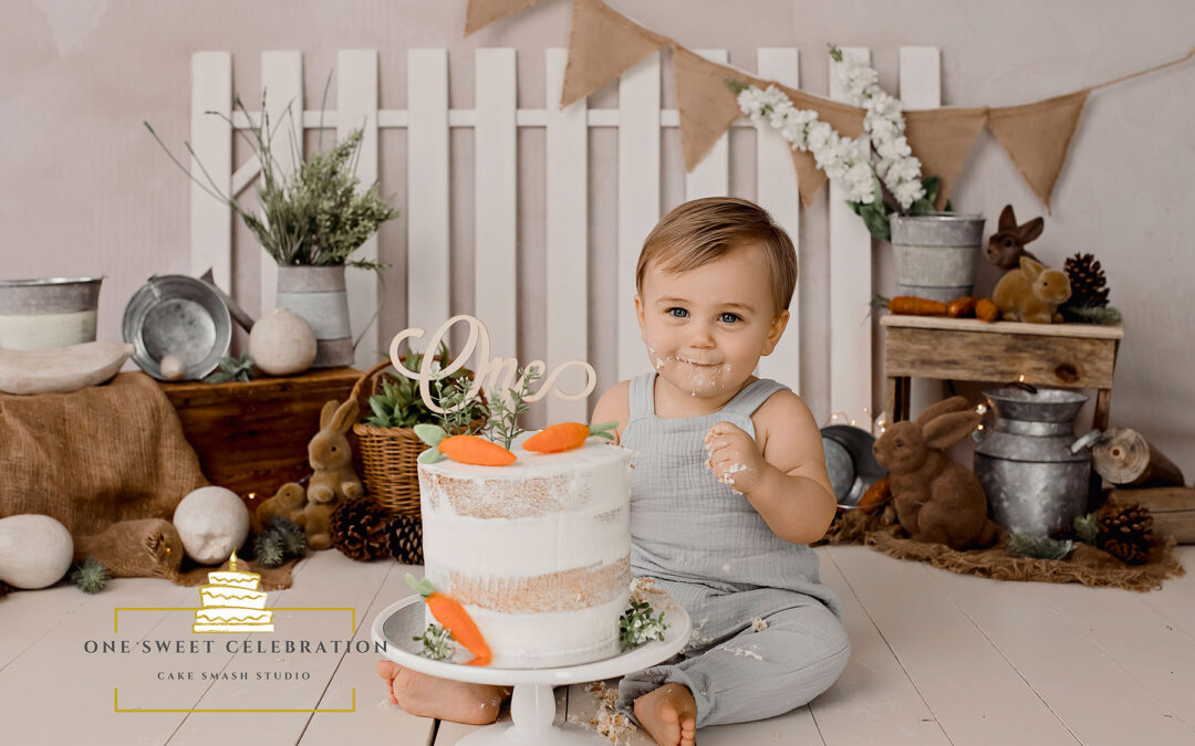 Brisbane Cake Smash photographer – Peter Rabbit Cake Smash
