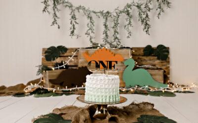 Dinosaur Roar Cake Smash – Brisbane cake smash photographer
